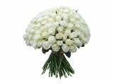 101 белая роза (0)