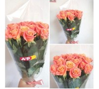 "15 roses ""Miss piggy"" 60 cm in film!"