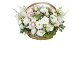 Цветы в корзинке (0)