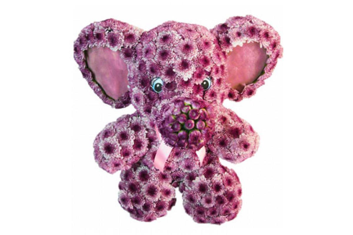 Слон из цветов заказать, доставки цветов