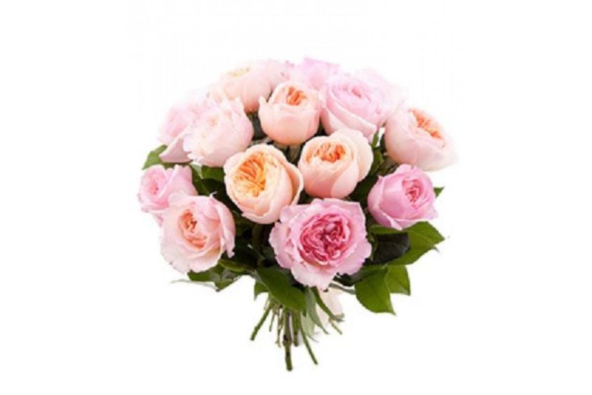 Картинки букеты пионовых роз на белом фоне, днем рождения фотошоп