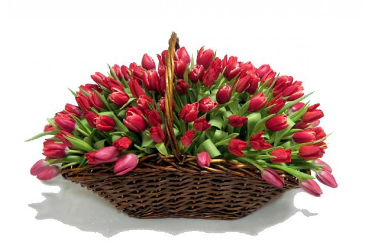 Ролл, открытка корзина с тюльпанами