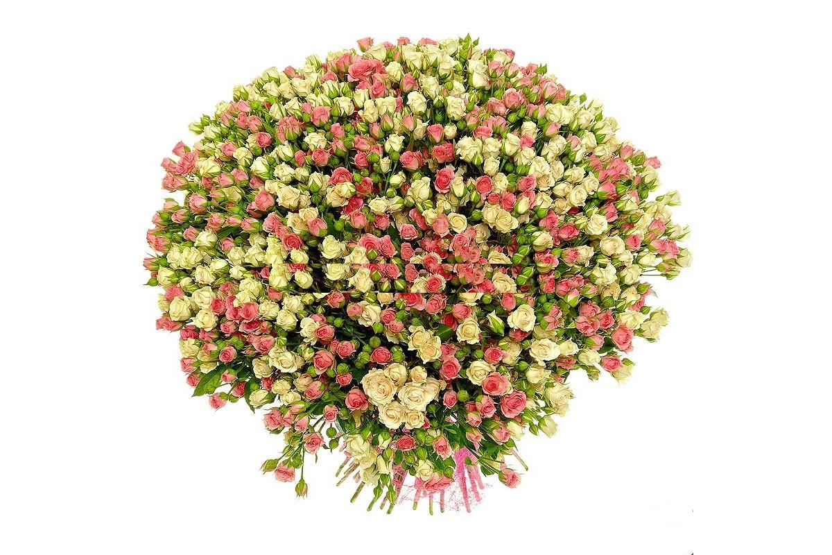 Небольшие картинки с цветами красивые