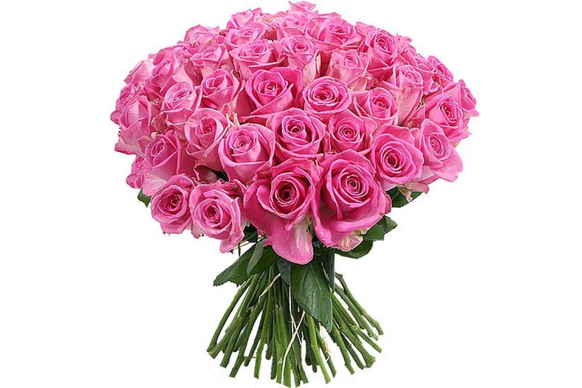 Картинка с букетом роз на белом фоне, картинки