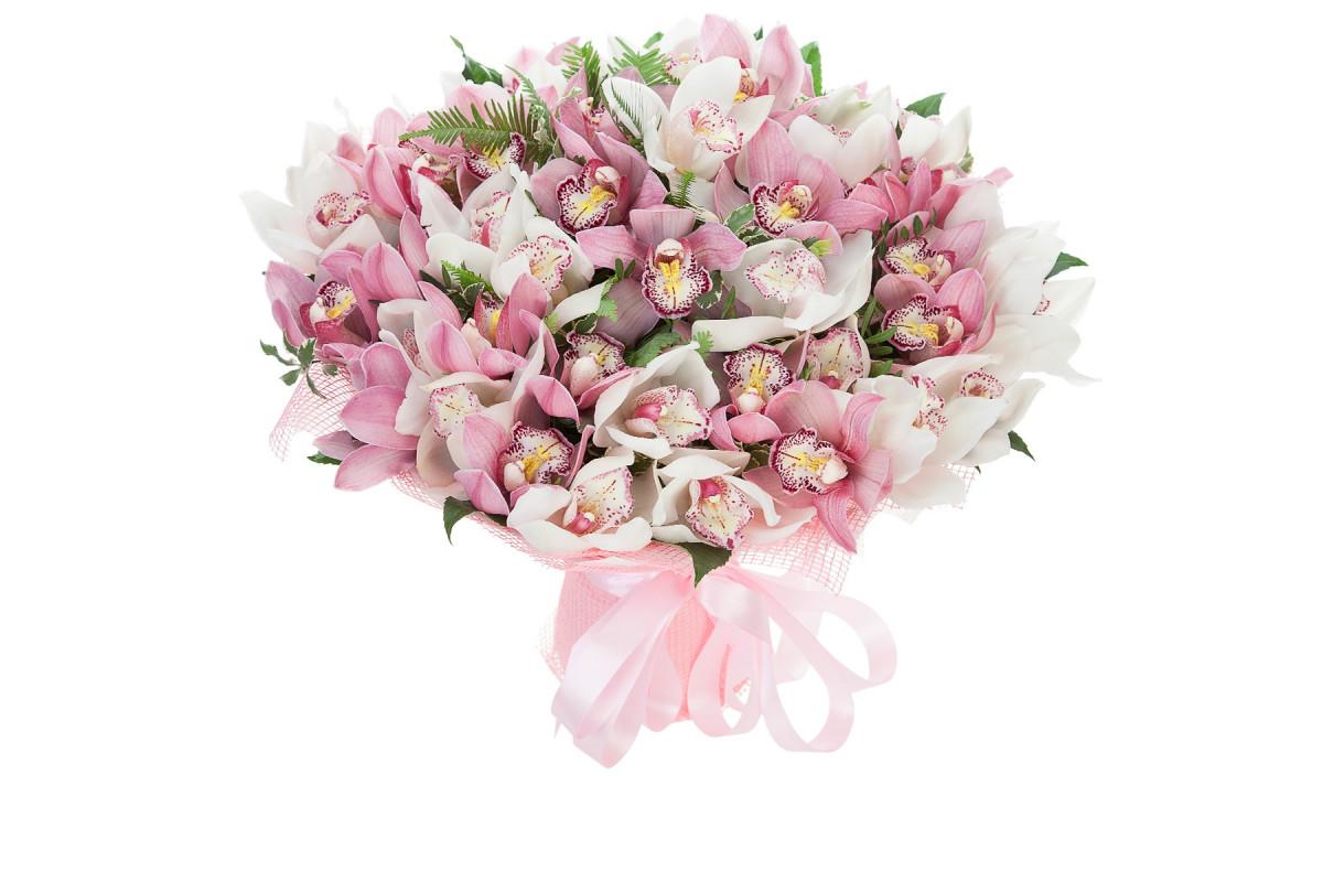 картинки букетов орхидеи его