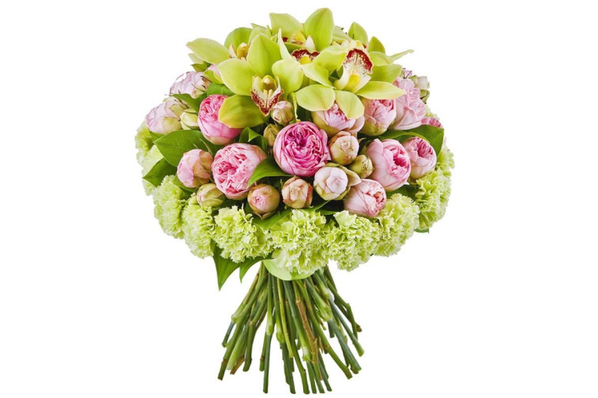 Подсолнухом камиллой, букет гвоздики орхидеей фото