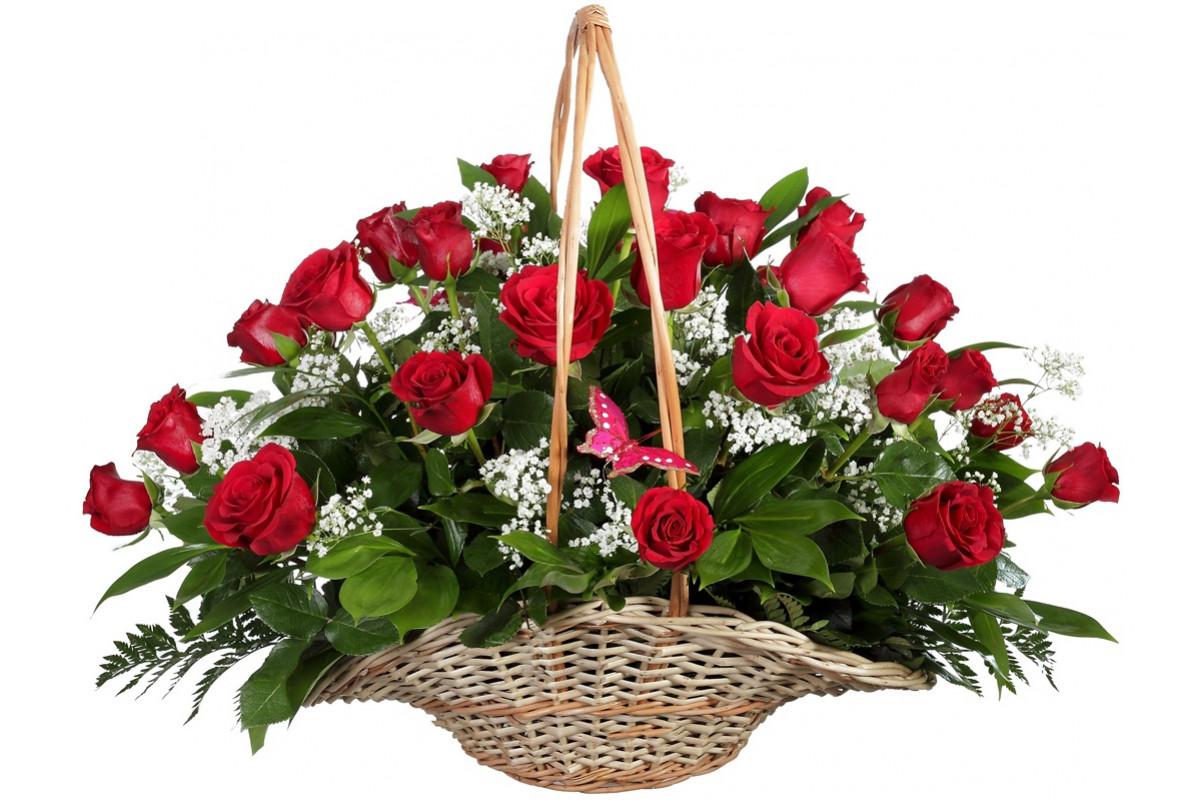 Розы фото в корзине