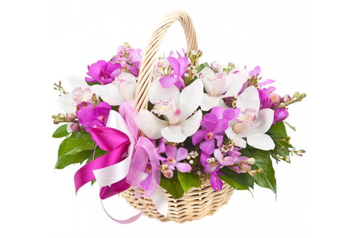 Букет орхидеи в корзину москва, красивые букеты