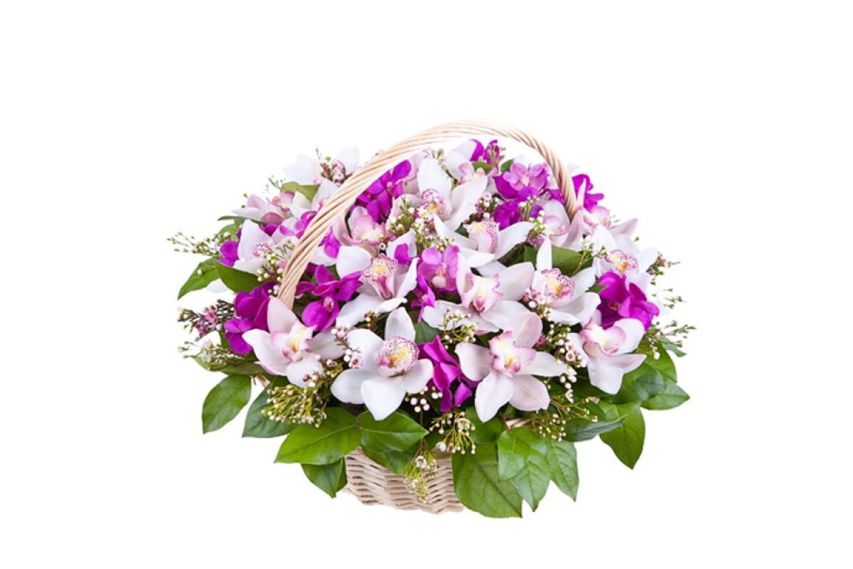 первый картинки букеты с орхидеями фото смыслом слезами