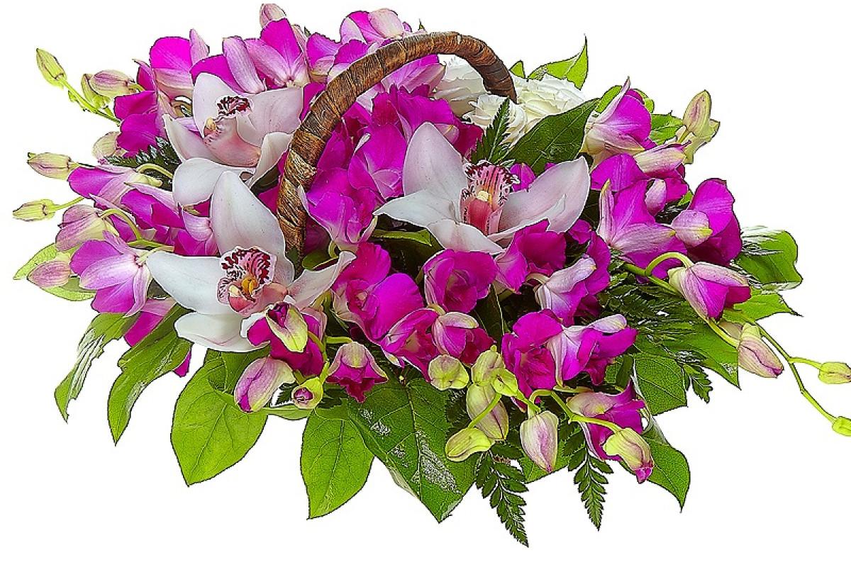 Днем, картинки букет из орхидей
