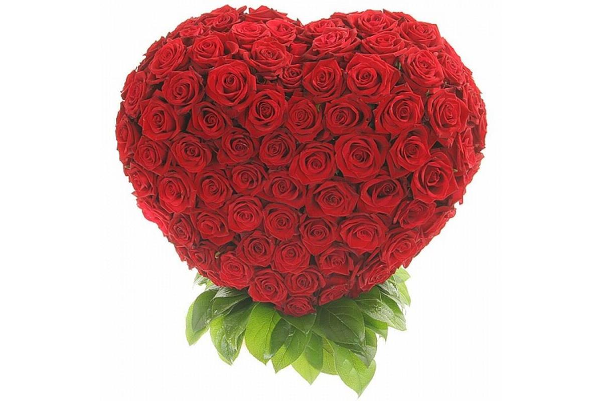 Красивые цветы для поздравления с днем рождения
