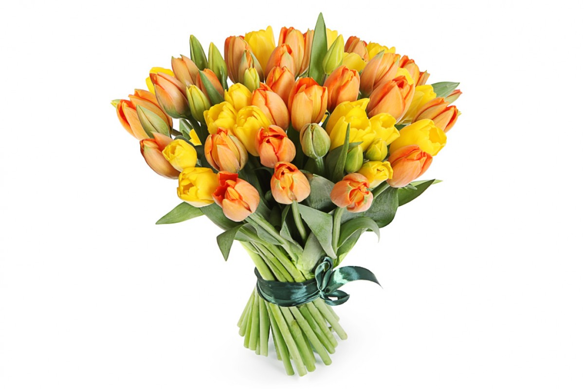 Тюльпанов букет 1000 штука, дерева купить москве