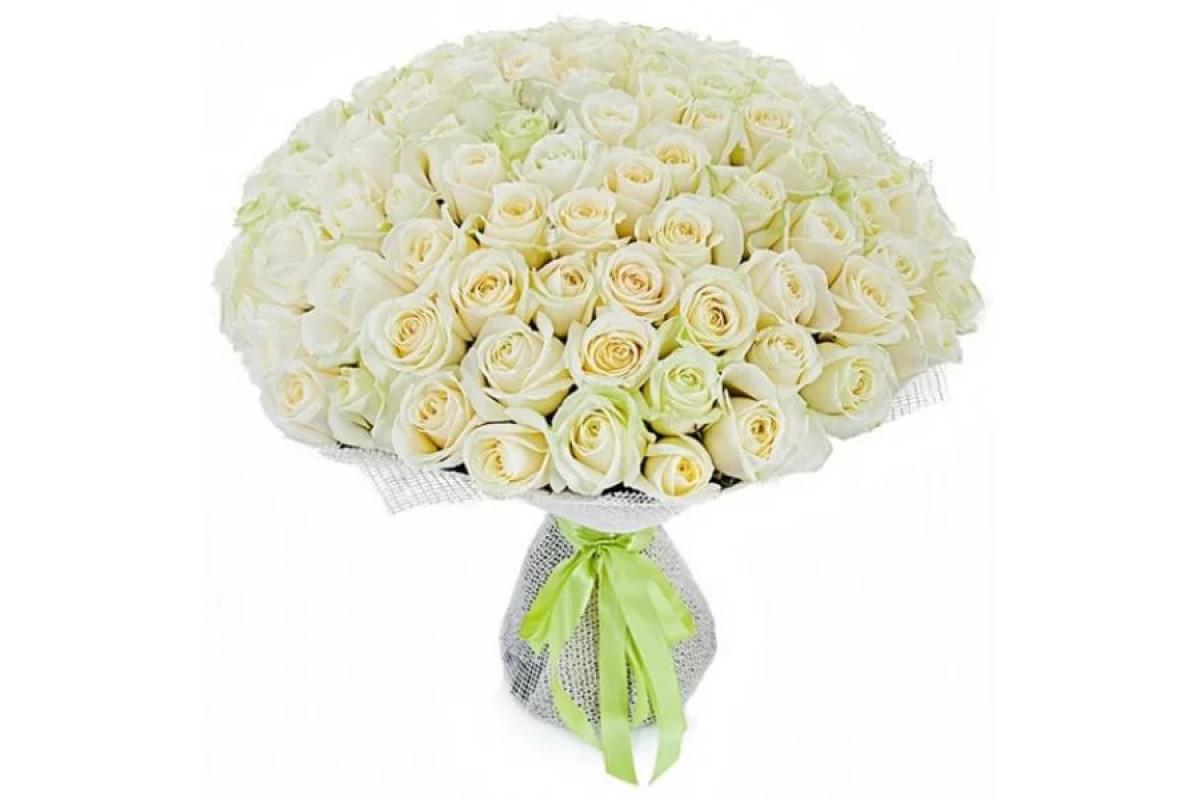 подготовительном большой букет белых роз с пожеланиями двух языках русском