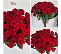 51 red rose 50 cm!