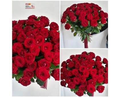 51 red rose 50 cm!