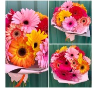25 gerberas mix in a stylish package!