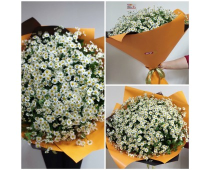 Bouquet of daisies!