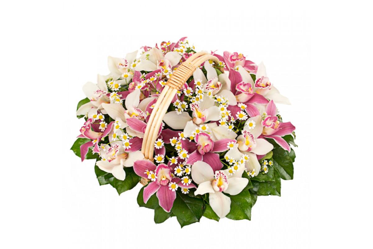 Букет корзина орхидеями фото
