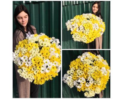 Bouquet of 31 chrysanthemums mix!